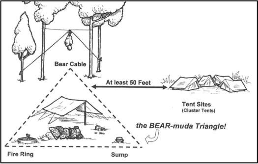 Bear-mudaTriangle